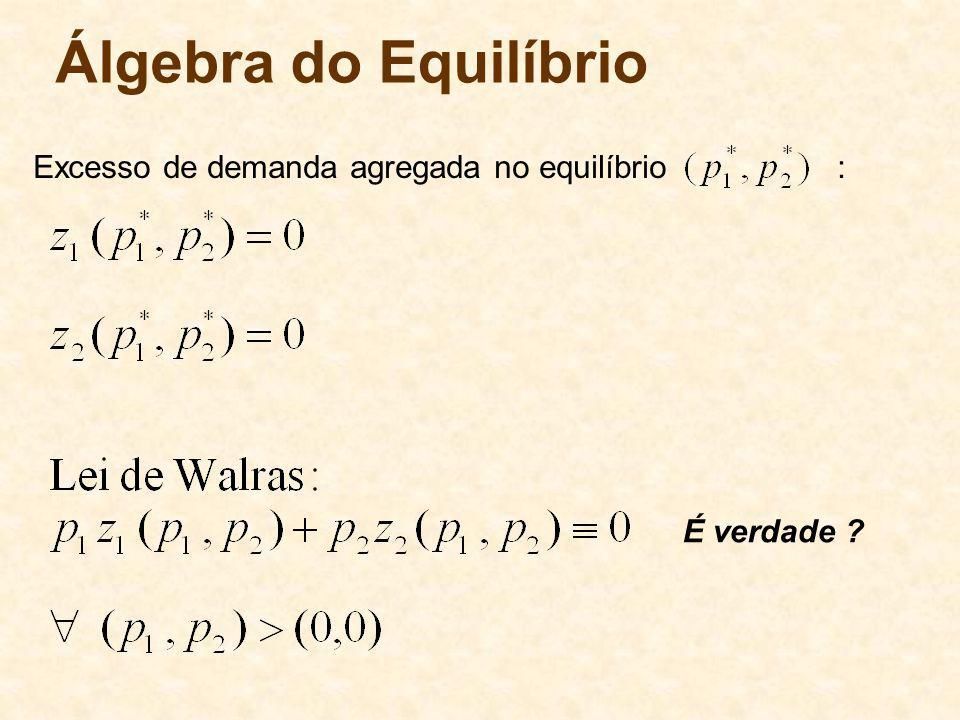 Álgebra do Equilíbrio Excesso de demanda agregada no equilíbrio :