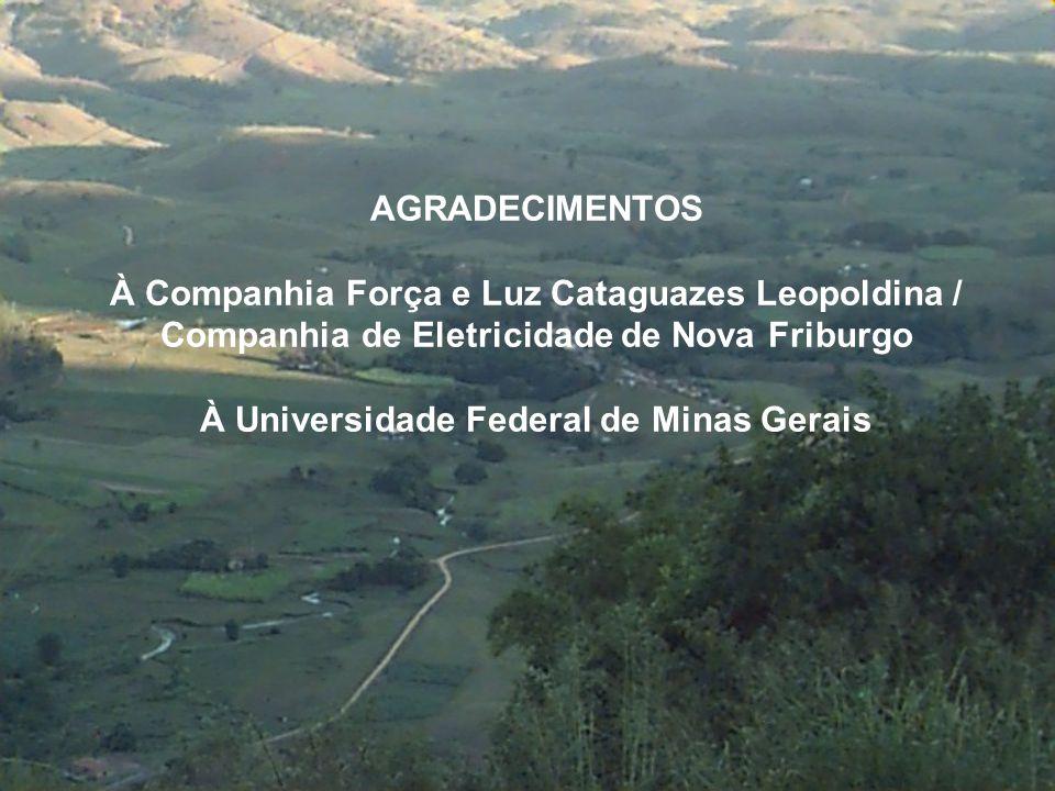 AGRADECIMENTOS À Companhia Força e Luz Cataguazes Leopoldina / Companhia de Eletricidade de Nova Friburgo À Universidade Federal de Minas Gerais