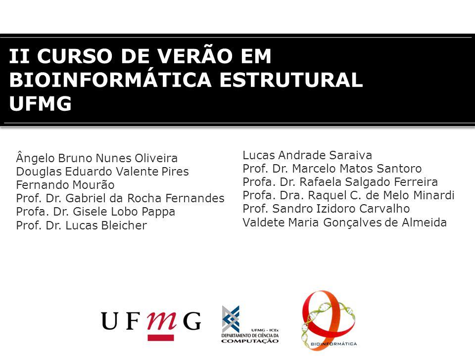 II CURSO DE VERÃO EM BIOINFORMÁTICA ESTRUTURAL UFMG