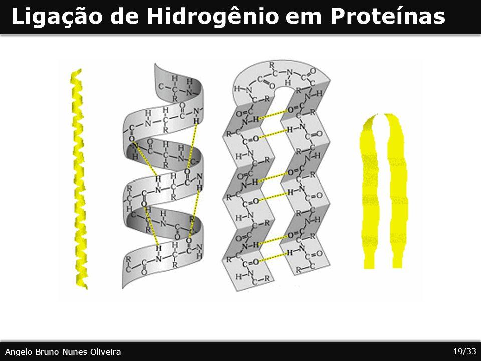 Ligação de Hidrogênio em Proteínas