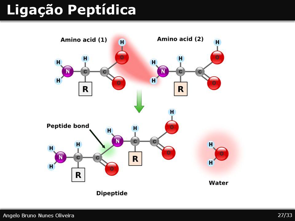 Ligação Peptídica