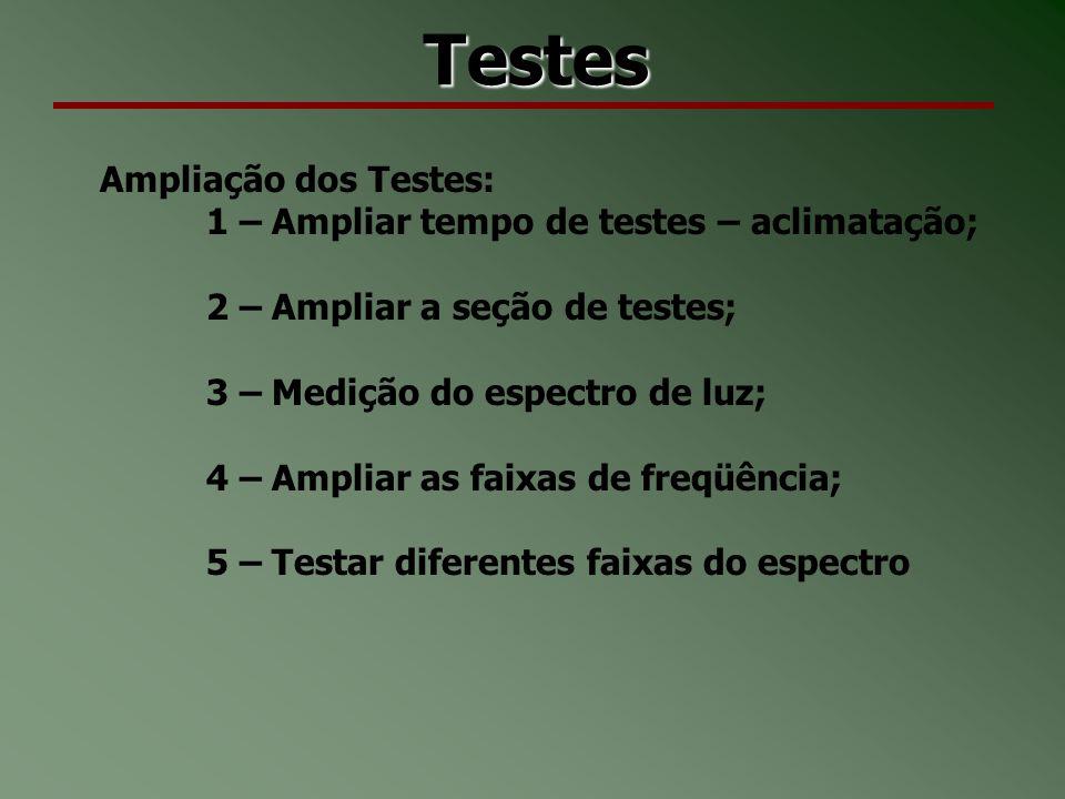 Testes Ampliação dos Testes:
