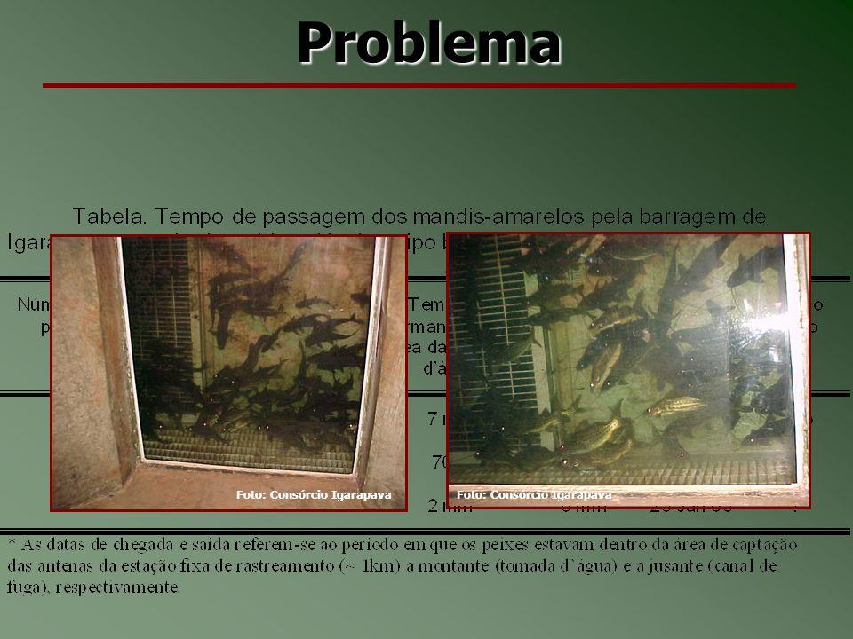 Problema Foto: Consórcio Igarapava