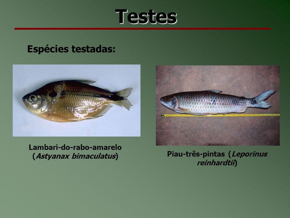 Testes Espécies testadas: