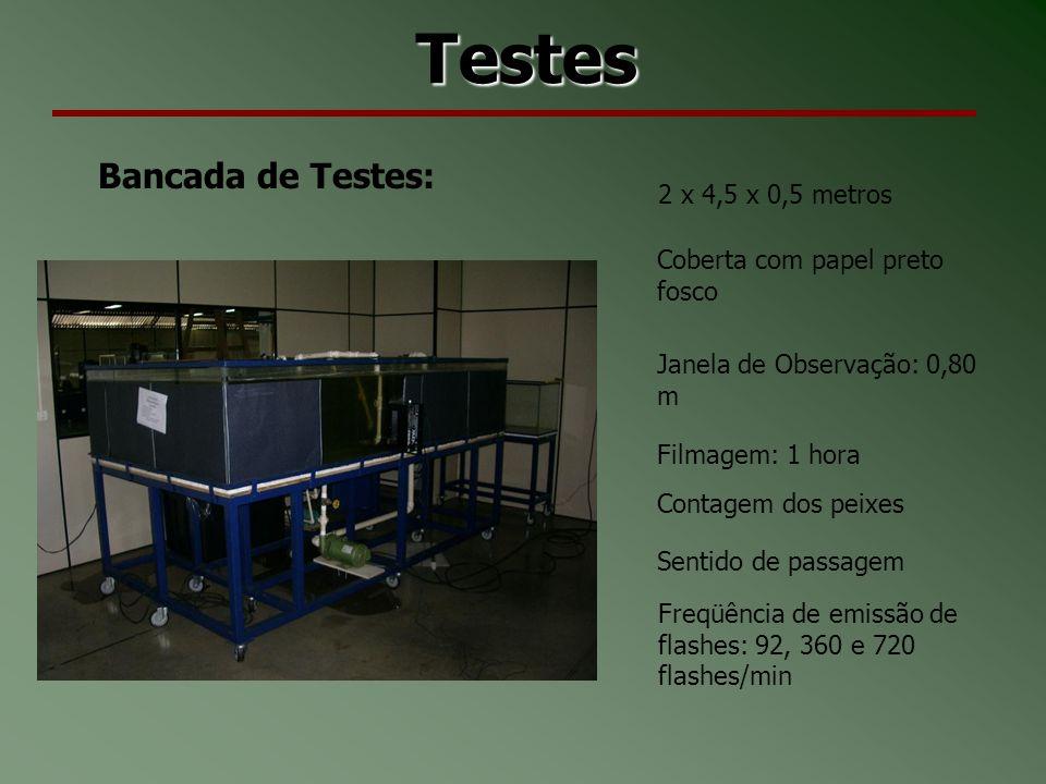 Testes Bancada de Testes: 2 x 4,5 x 0,5 metros