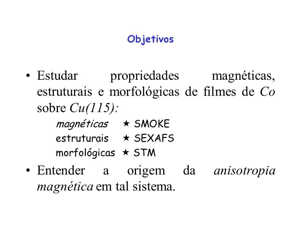 Entender a origem da anisotropia magnética em tal sistema.