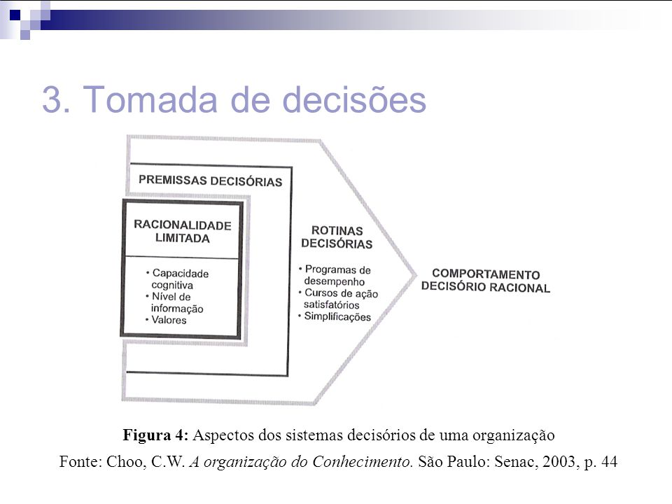 Figura 4: Aspectos dos sistemas decisórios de uma organização