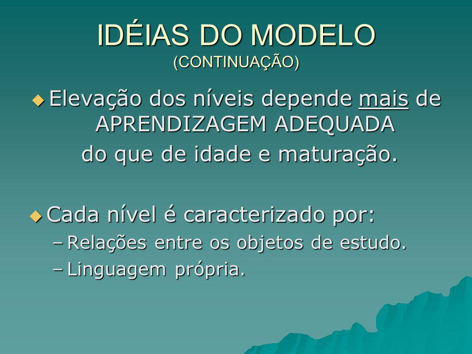 IDÉIAS DO MODELO (CONTINUAÇÃO)