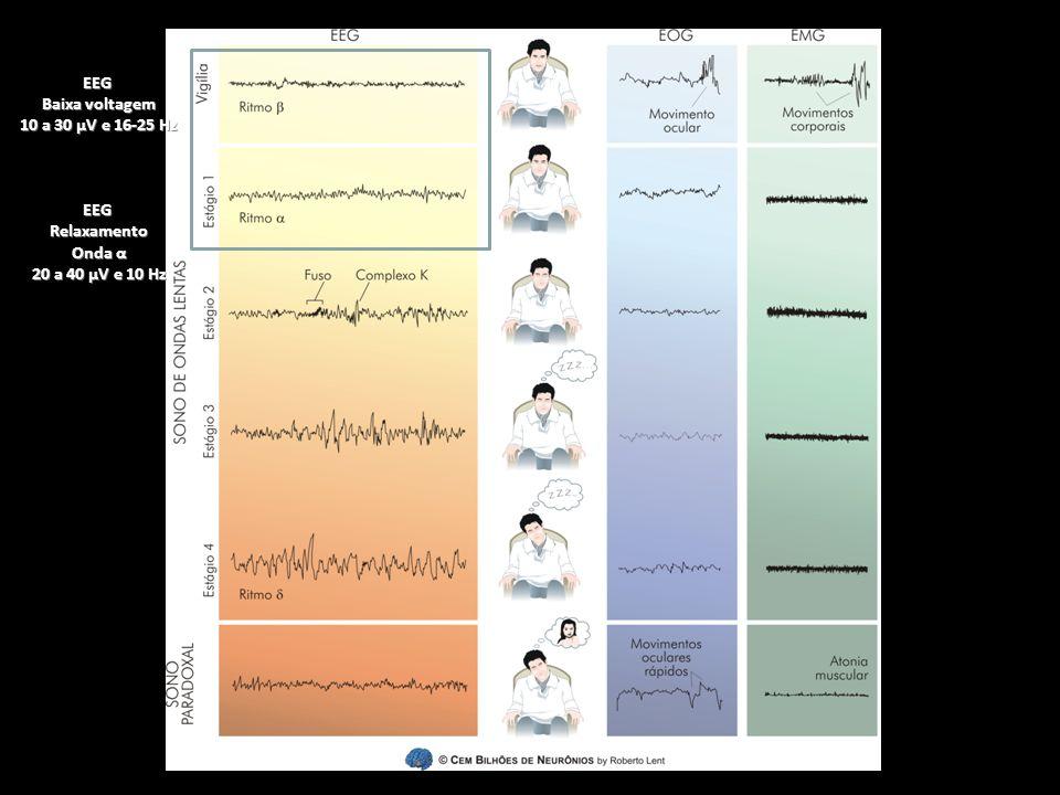 EEG Baixa voltagem 10 a 30 µV e 16-25 Hz Relaxamento Onda α 20 a 40 µV e 10 Hz