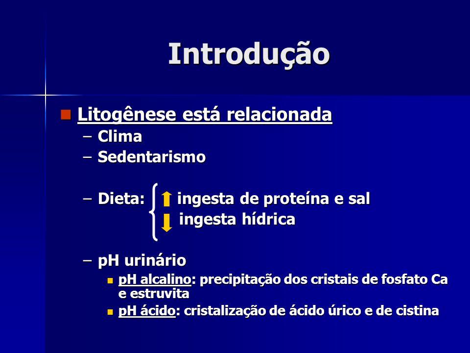 Introdução Litogênese está relacionada Clima Sedentarismo