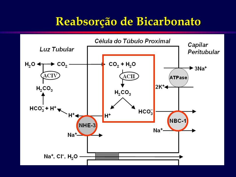 Reabsorção de Bicarbonato