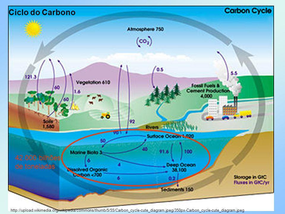 Ciclo do Carbono 42.000 bilhões de toneladas