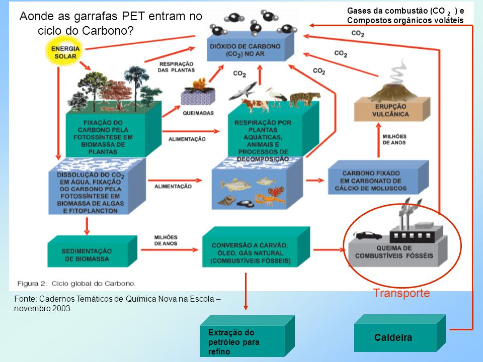 Aonde as garrafas PET entram no ciclo do Carbono