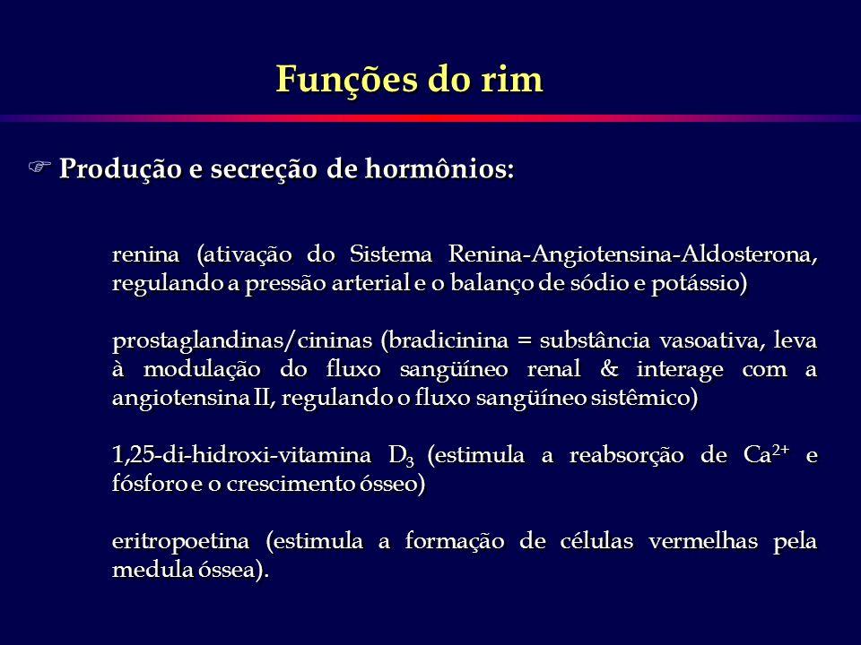 Funções do rim Produção e secreção de hormônios: