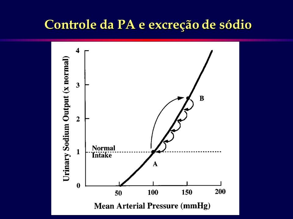 Controle da PA e excreção de sódio