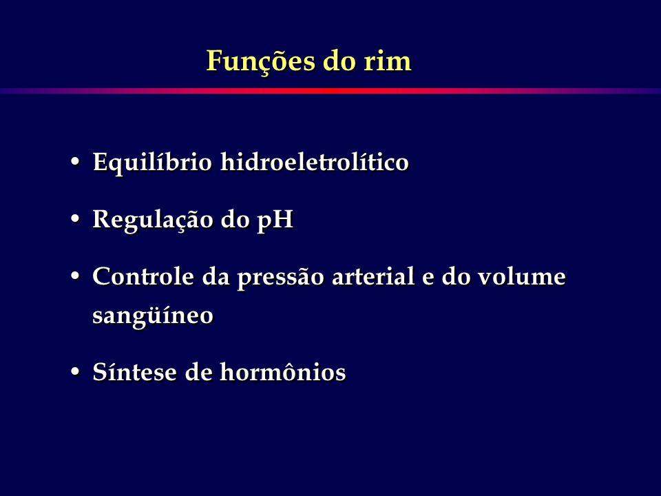 Funções do rim Equilíbrio hidroeletrolítico Regulação do pH