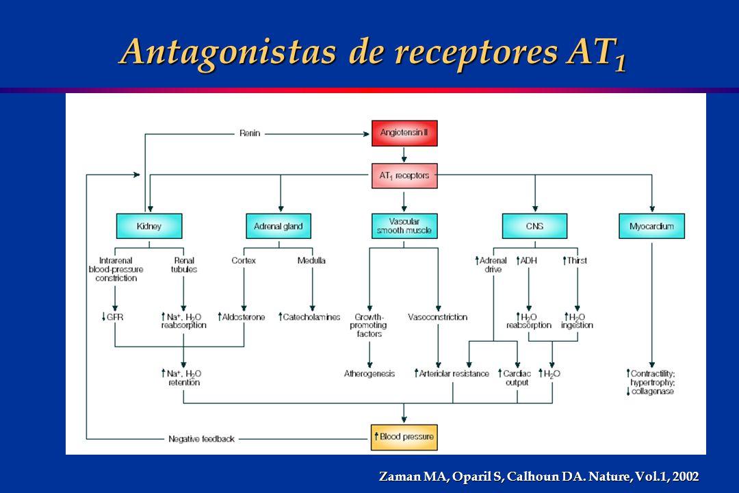Antagonistas de receptores AT1