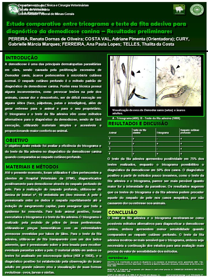 Departamento de Clínica e Cirurgia Veterinárias