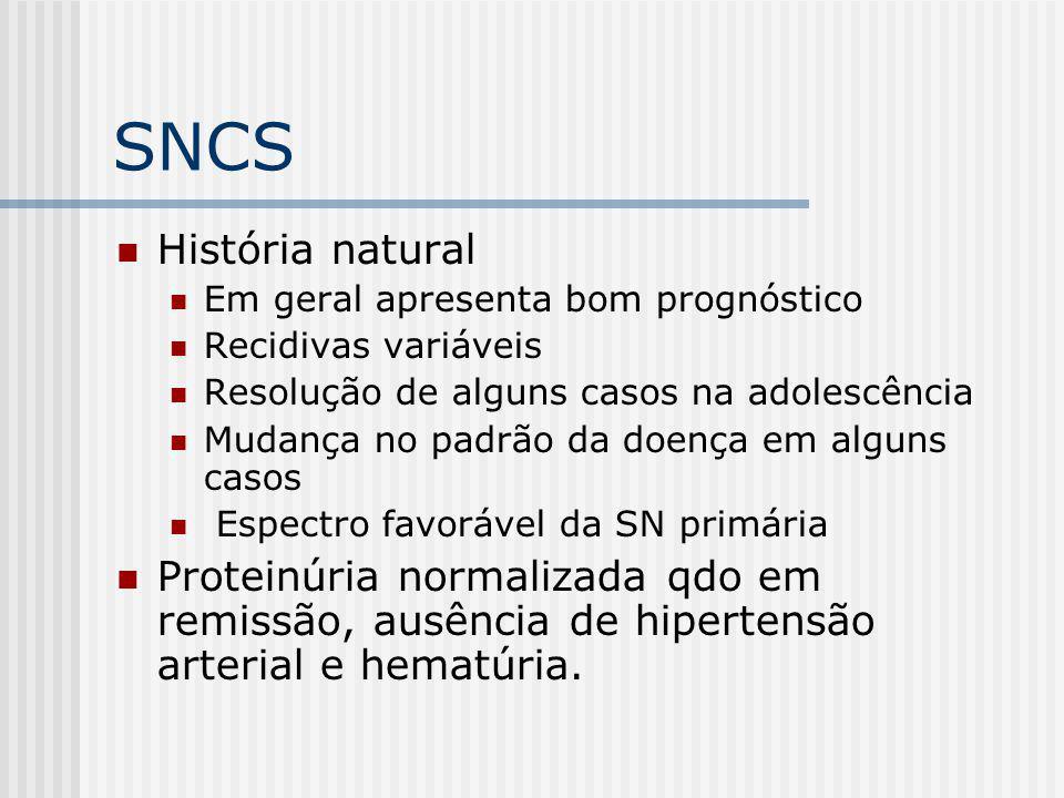 SNCS História natural. Em geral apresenta bom prognóstico. Recidivas variáveis. Resolução de alguns casos na adolescência.