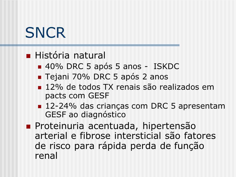 SNCR História natural. 40% DRC 5 após 5 anos - ISKDC. Tejani 70% DRC 5 após 2 anos. 12% de todos TX renais são realizados em pacts com GESF.