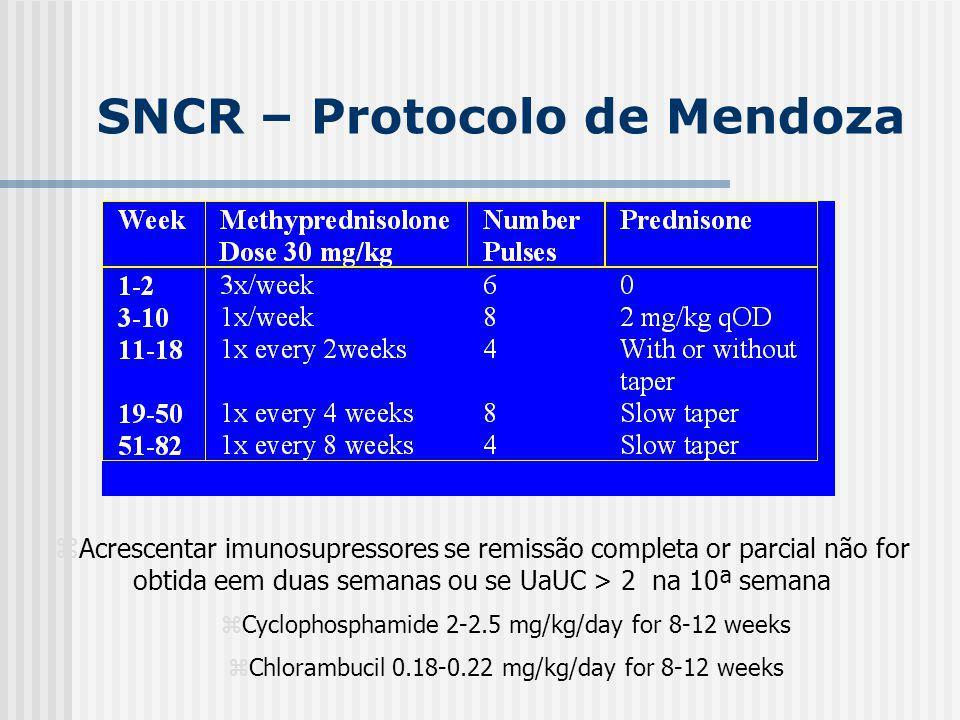 SNCR – Protocolo de Mendoza