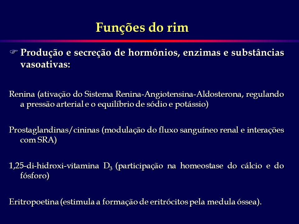 Funções do rim Produção e secreção de hormônios, enzimas e substâncias vasoativas: