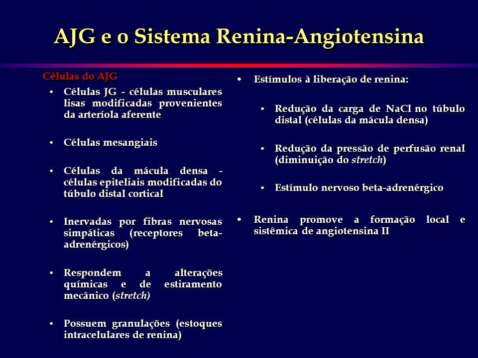 AJG e o Sistema Renina-Angiotensina