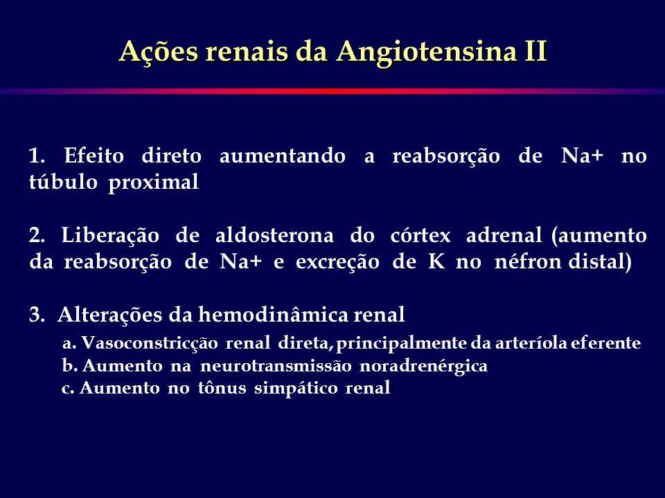 Ações renais da Angiotensina II