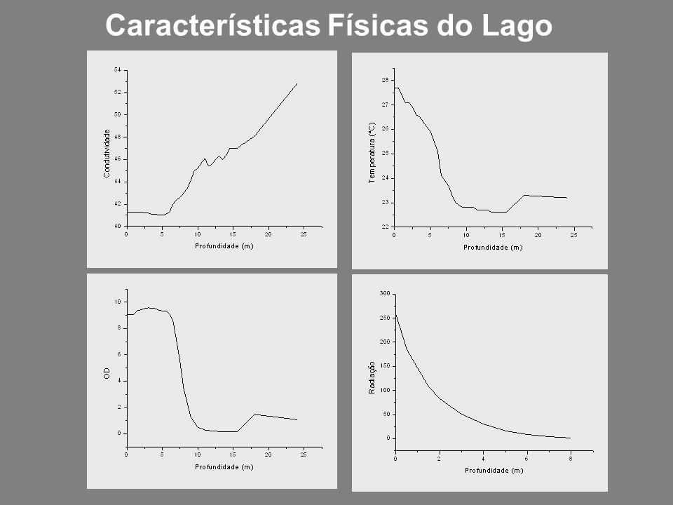 Características Físicas do Lago