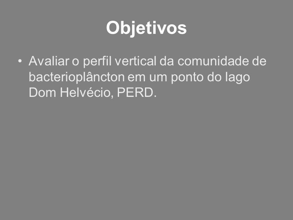 Objetivos Avaliar o perfil vertical da comunidade de bacterioplâncton em um ponto do lago Dom Helvécio, PERD.