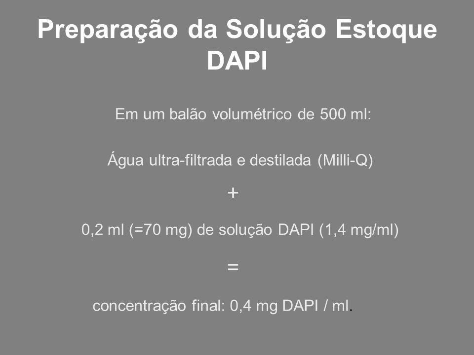 Preparação da Solução Estoque DAPI