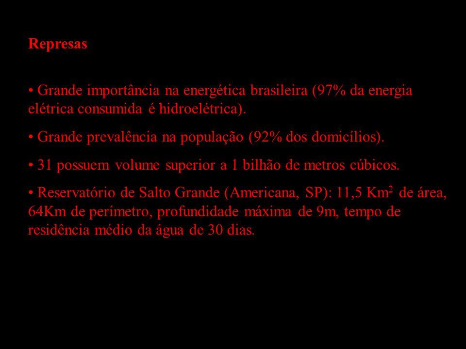 Represas Grande importância na energética brasileira (97% da energia elétrica consumida é hidroelétrica).