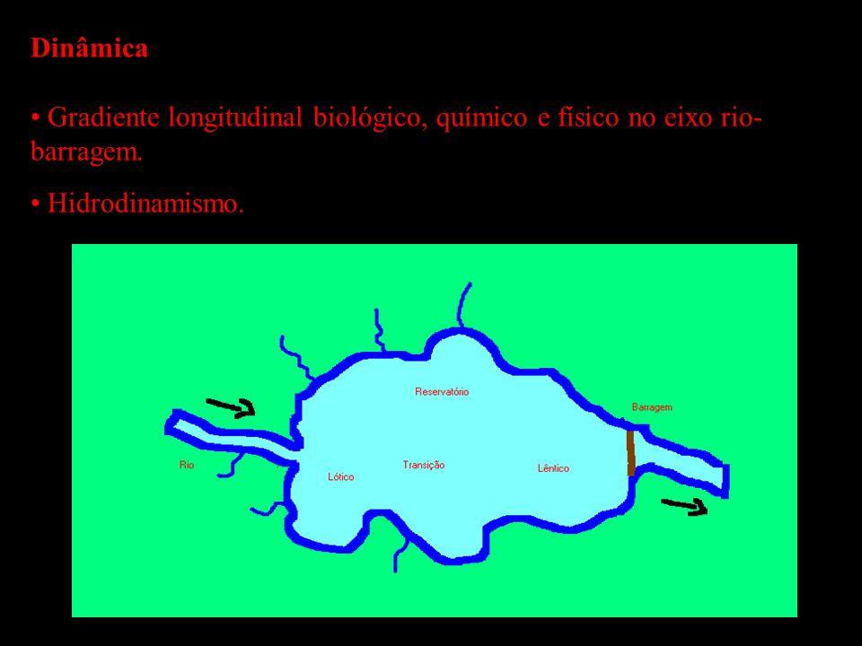Dinâmica Gradiente longitudinal biológico, químico e físico no eixo rio-barragem. Hidrodinamismo.