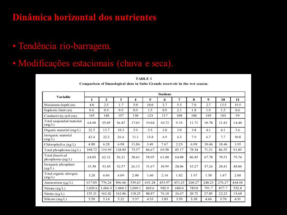 Dinâmica horizontal dos nutrientes