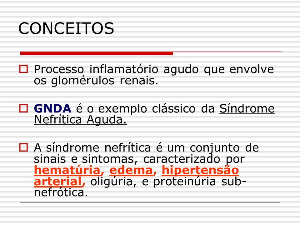 CONCEITOS Processo inflamatório agudo que envolve os glomérulos renais. GNDA é o exemplo clássico da Síndrome Nefrítica Aguda.
