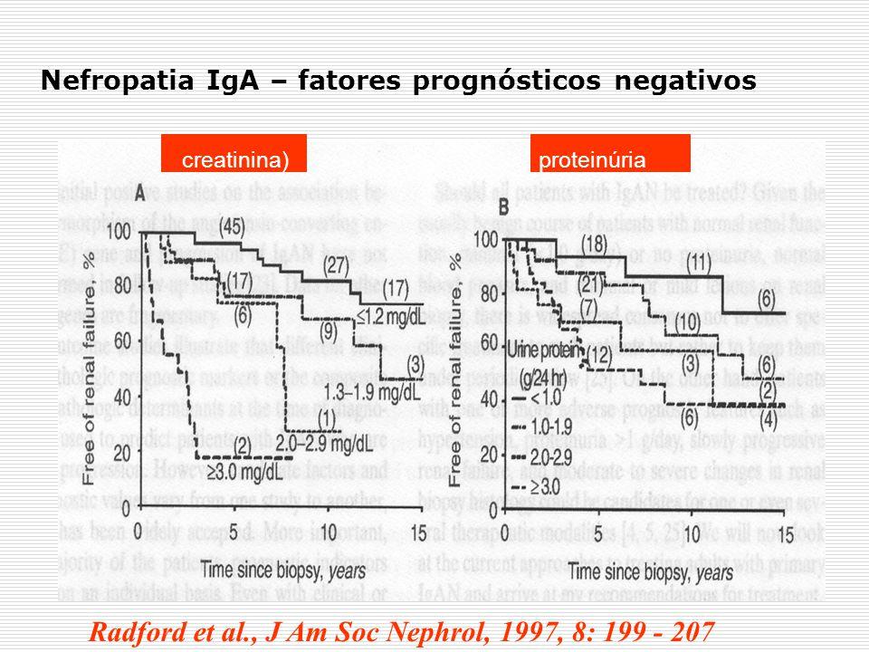 Nefropatia IgA – fatores prognósticos negativos