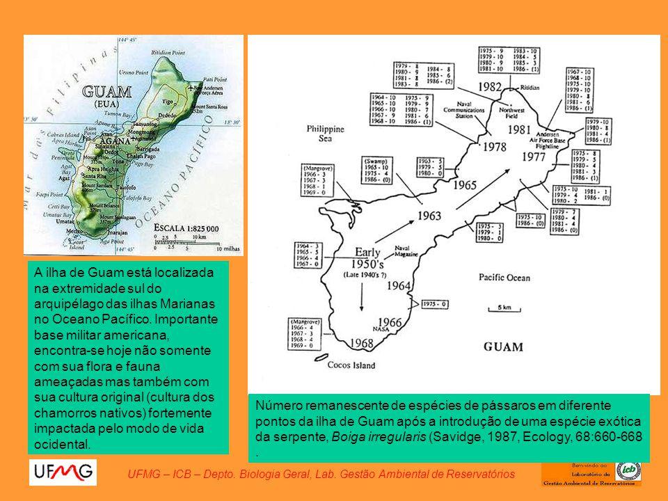 A ilha de Guam está localizada na extremidade sul do arquipélago das ilhas Marianas no Oceano Pacífico. Importante base militar americana, encontra-se hoje não somente com sua flora e fauna ameaçadas mas também com sua cultura original (cultura dos chamorros nativos) fortemente impactada pelo modo de vida ocidental.