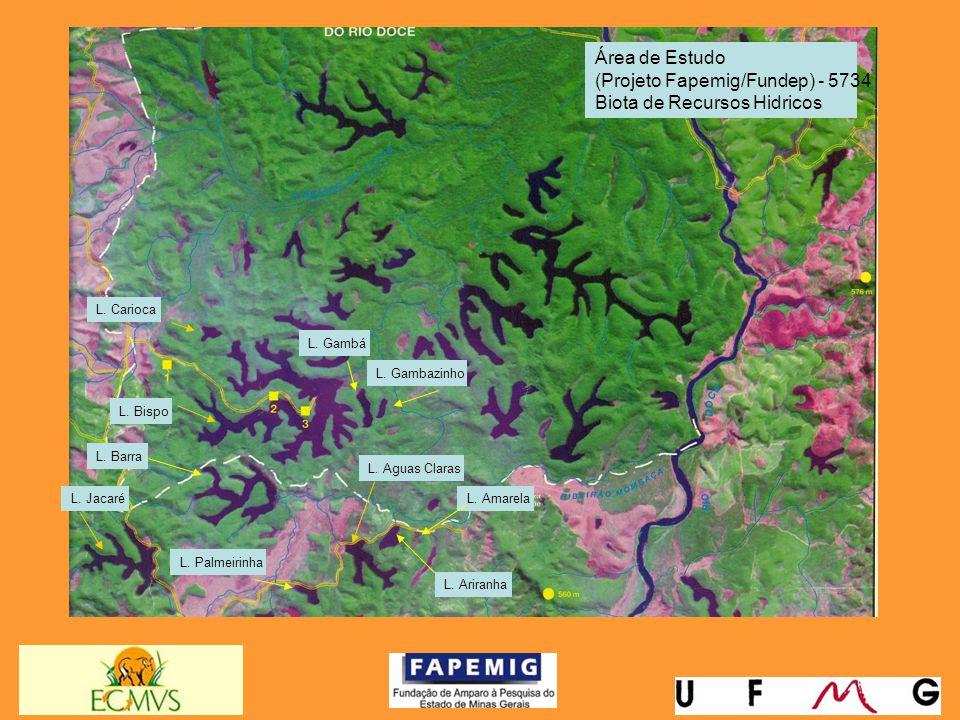(Projeto Fapemig/Fundep) - 5734 Biota de Recursos Hidricos