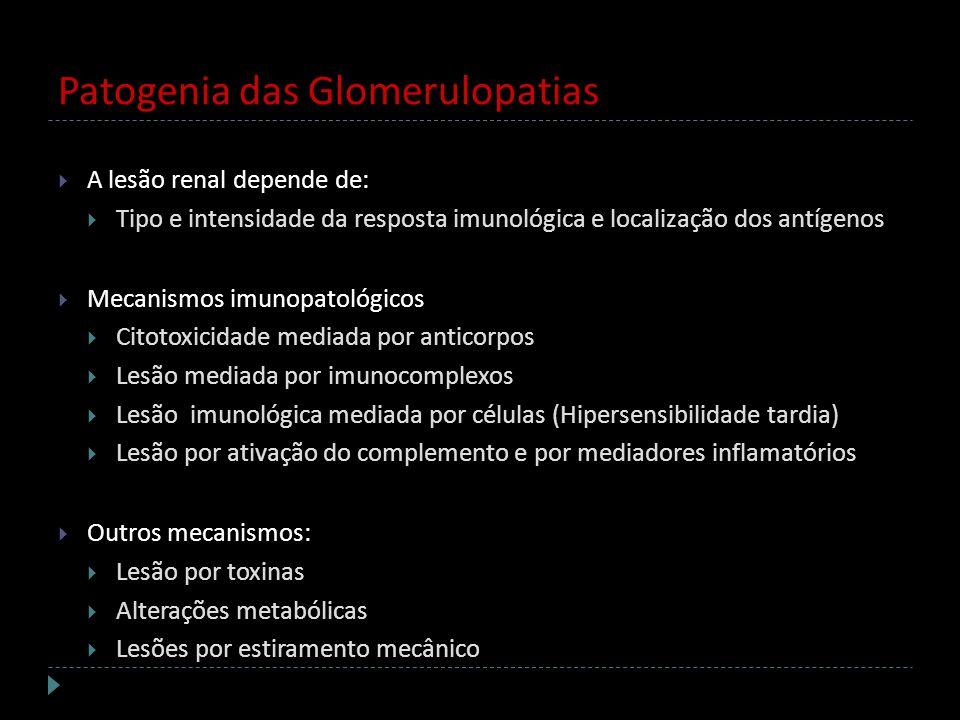 Patogenia das Glomerulopatias