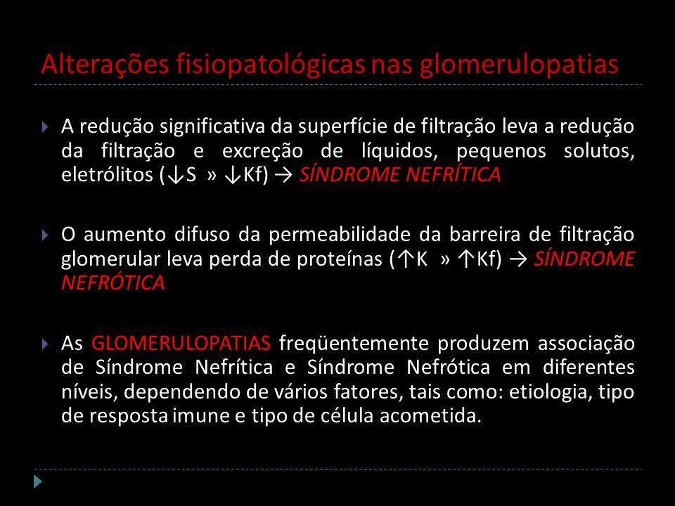 Alterações fisiopatológicas nas glomerulopatias