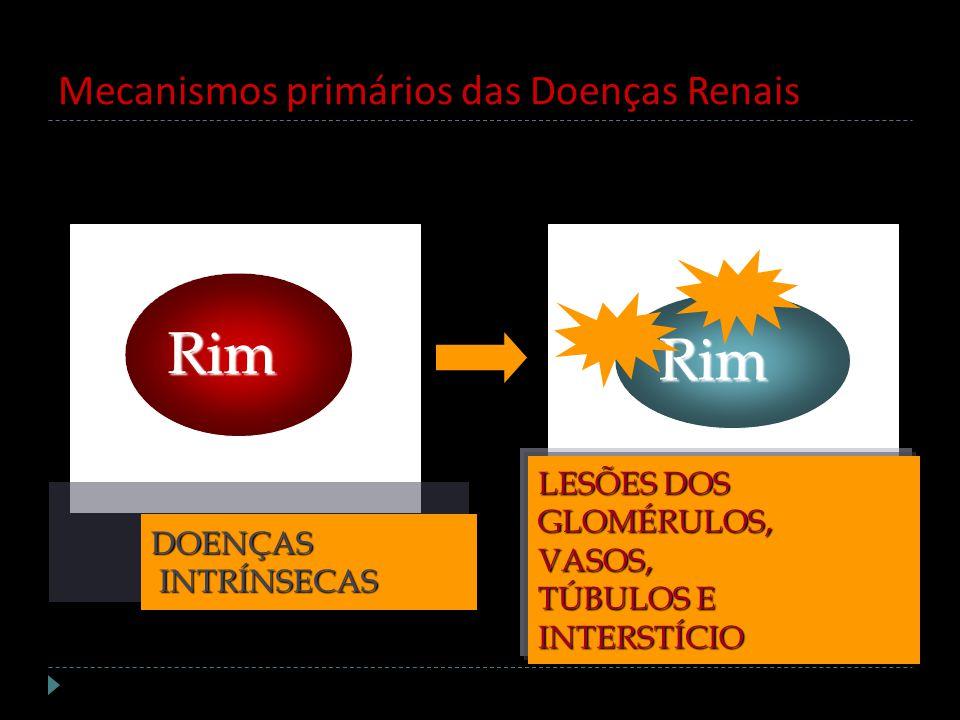 Mecanismos primários das Doenças Renais