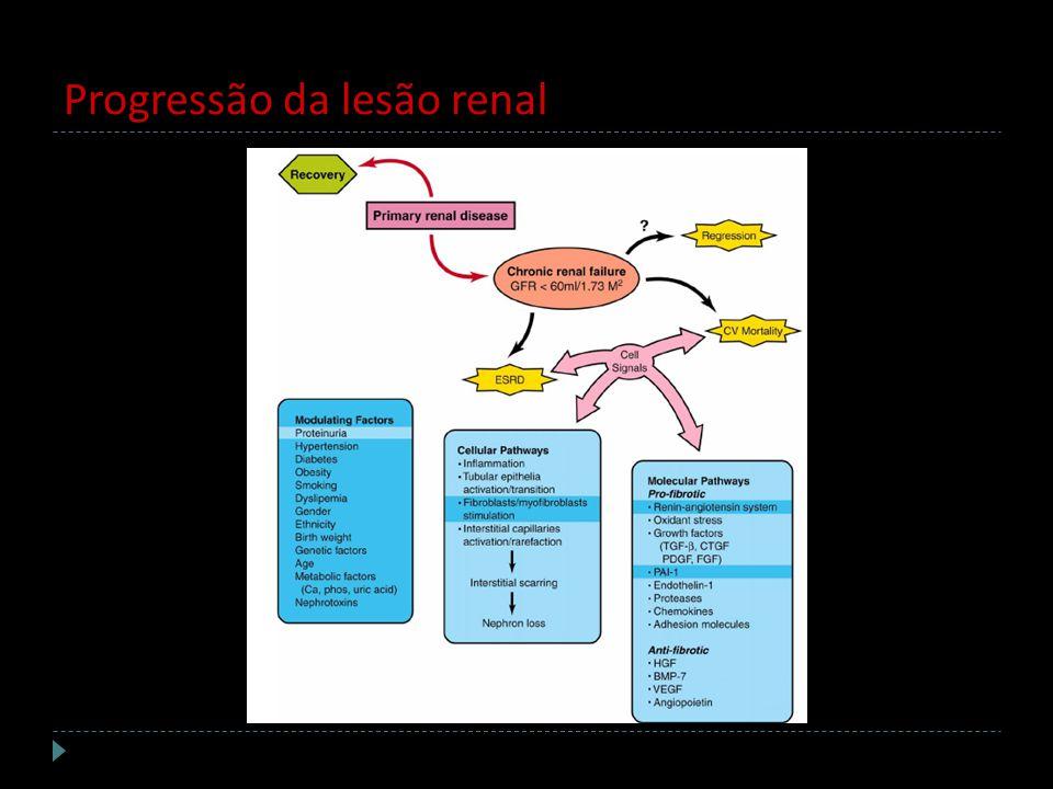 Progressão da lesão renal