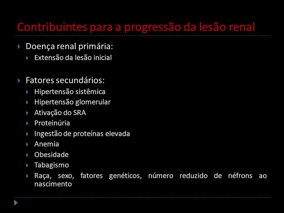 Contribuintes para a progressão da lesão renal