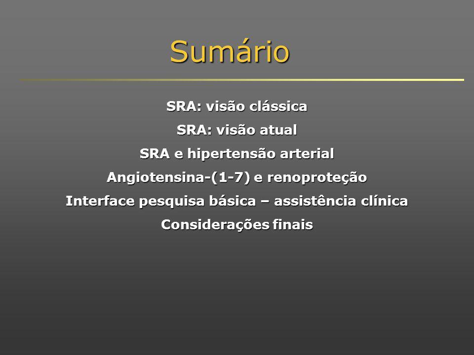 Sumário SRA: visão clássica SRA: visão atual