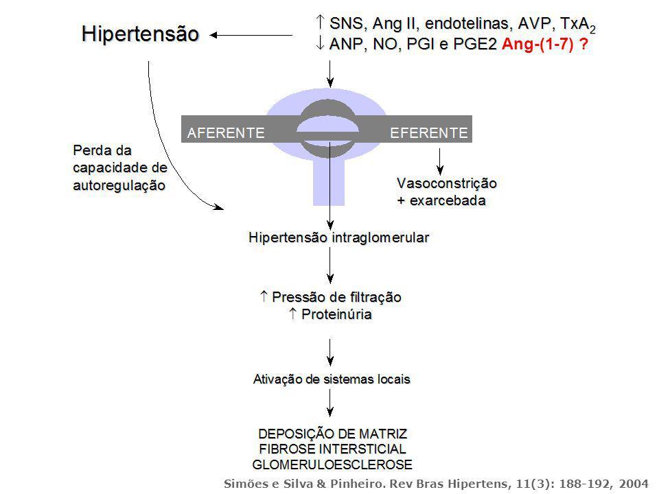 Simões e Silva & Pinheiro. Rev Bras Hipertens, 11(3): 188-192, 2004