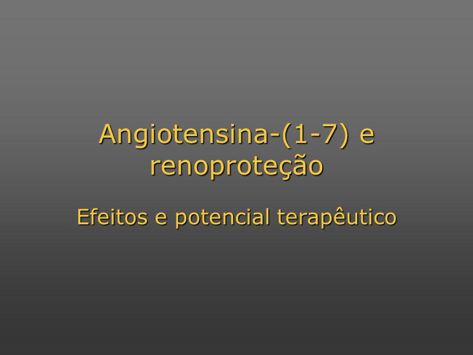 Angiotensina-(1-7) e renoproteção