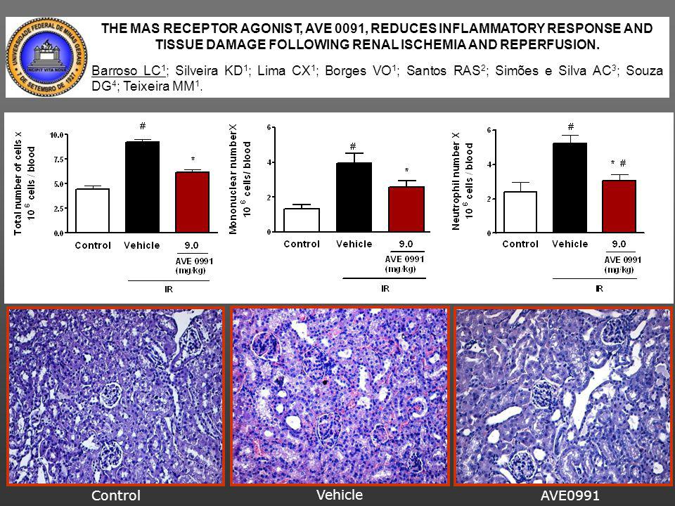 THE MAS RECEPTOR AGONIST, AVE 0091, REDUCES INFLAMMATORY RESPONSE AND TISSUE DAMAGE FOLLOWING RENAL ISCHEMIA AND REPERFUSION.