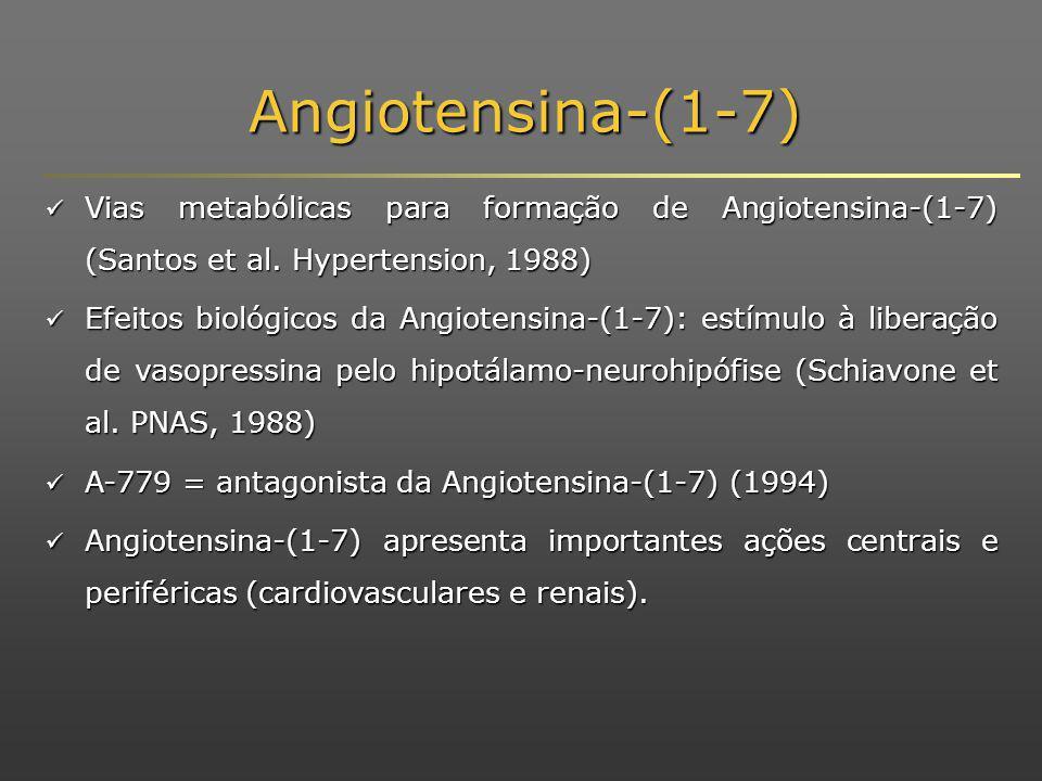 Angiotensina-(1-7) Vias metabólicas para formação de Angiotensina-(1-7) (Santos et al. Hypertension, 1988)