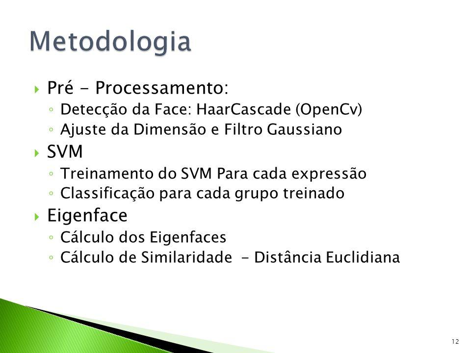 Metodologia Pré - Processamento: SVM Eigenface