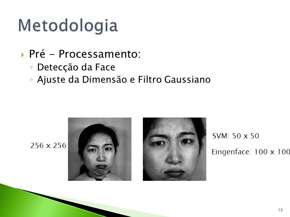 Metodologia Pré - Processamento: Detecção da Face